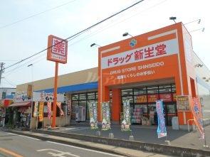 ドラッグ新生堂昇町店:徒歩16分(1249m)